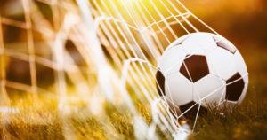 Image of Soccer Ball in Net
